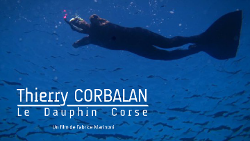 Documentaire le dauphin Corse